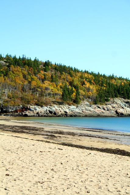 Sand Beach Autumn