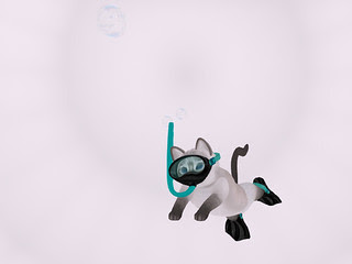 Hunt Prizes 1: KittyCatS