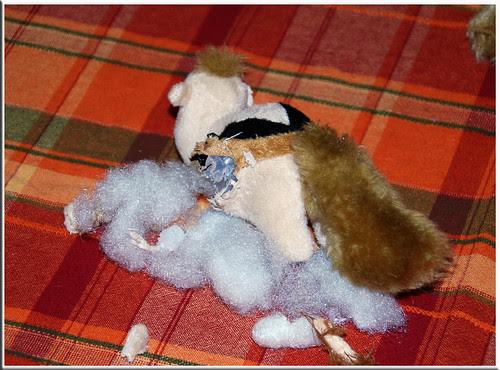 Squirrel-Murder-3
