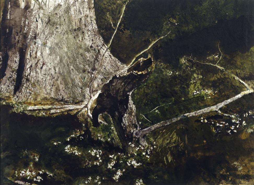 Sticks, 1980.  Andrew Wyeth (1917-2009).  Watercolor.  The Andrew and Betsy Wyeth.  Collection.  © 2018 Andrew Wyeth/Artists Rights Society (ARS), New York.