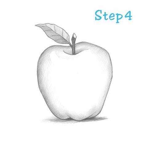 draw  apple beginning sketchdrawcom art