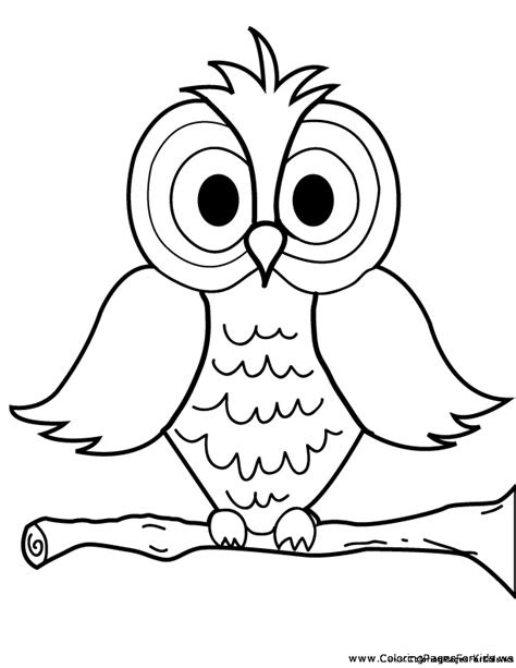nocturnal bird owl coloring pages  pictures cartoon clip