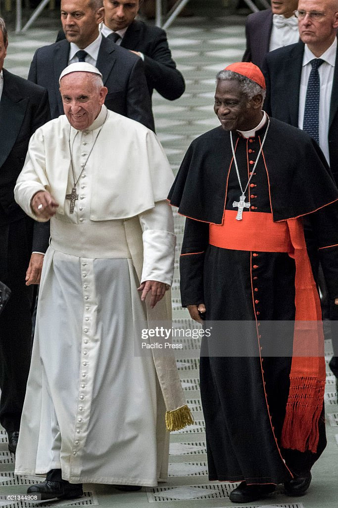 Image result for peter turkson pope francis