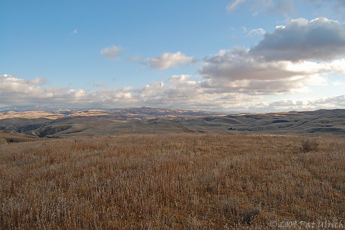 Late afternoon in Carrizo Plain NM