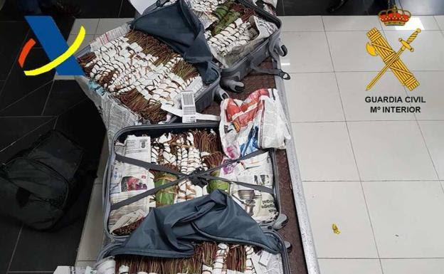 La droga encontrada en el equipaje del detenido./Ministerio del Interior