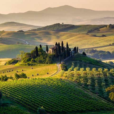 Foto: Francesco R. Iacomino / shutterstock.com