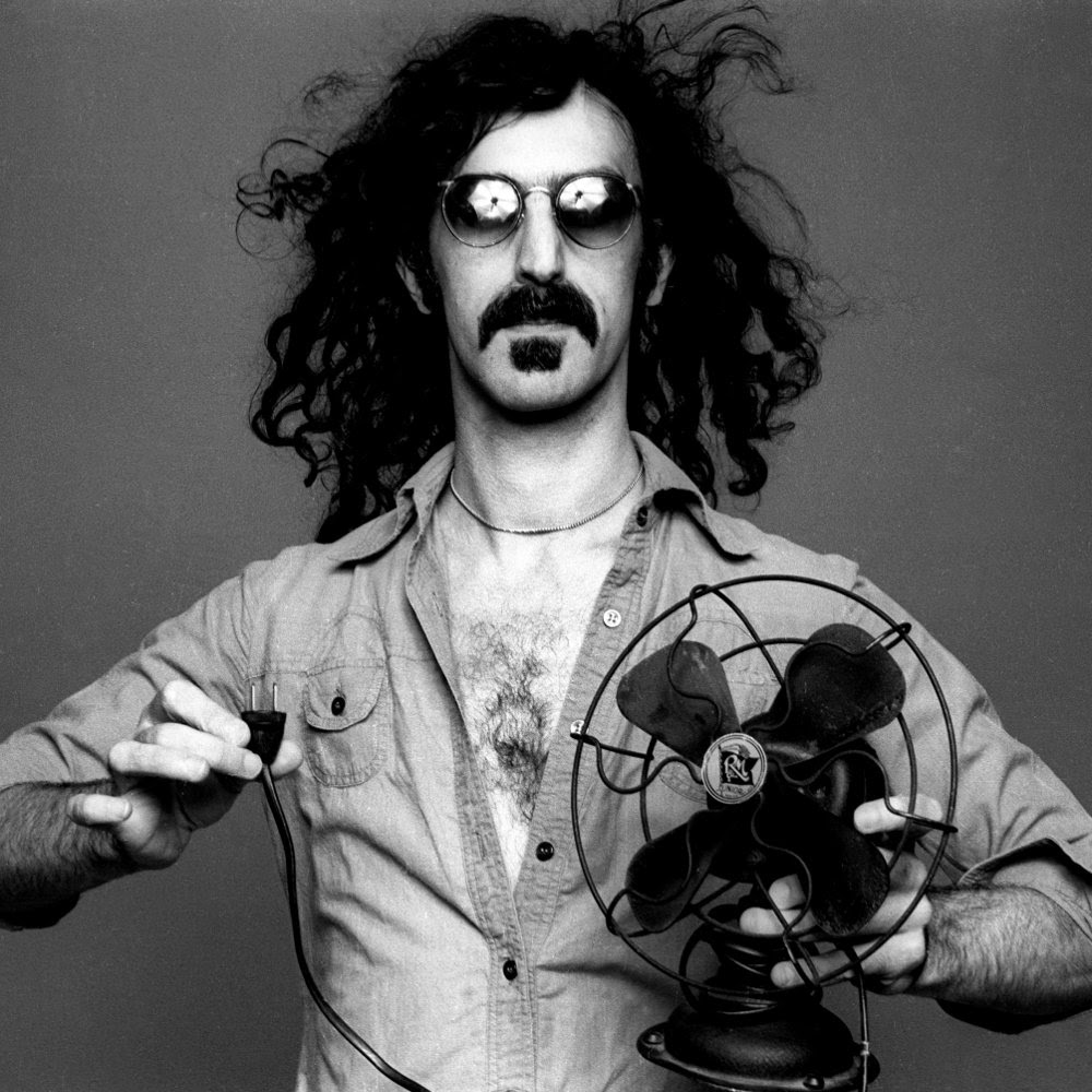 The legendary Frank Zappa, now with his own bacterium