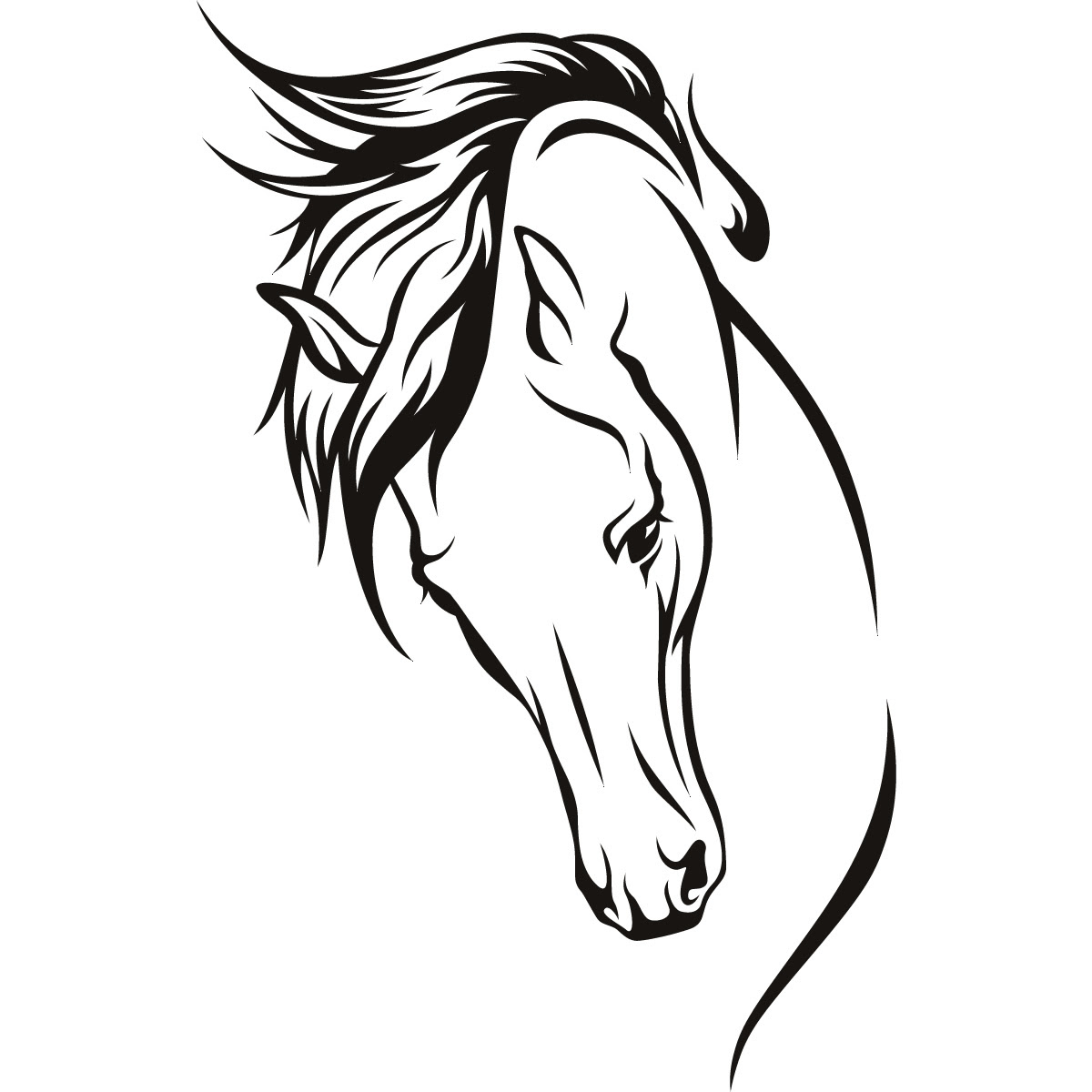 Horse Head Gallery For Free Horse Line Drawing Clip Art Image 19681