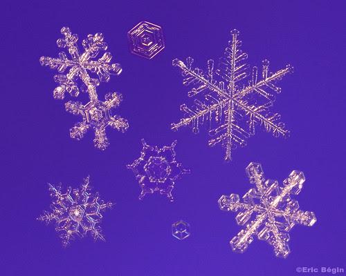 Snowflakes / Flocons de neige ( 1st of 3 )
