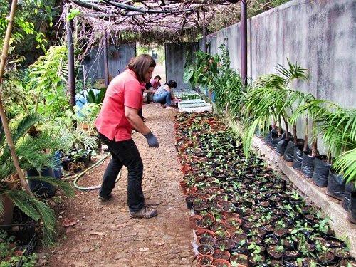 20100901-rq-Elda Sousa viveiro