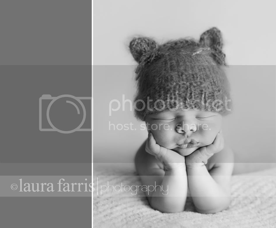boise newborn photography