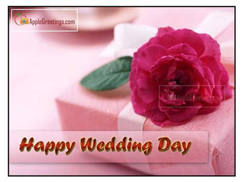 Beautiful Wedding Wishes Pictures (J 663 2) (ID=1955