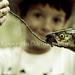 Catch of the Day di Antonio Ysursa