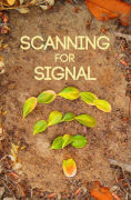Title: Scanning For Signal, Author: Kaitlin Abendroth