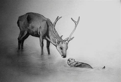 stag   otter  piece  animal art drawing