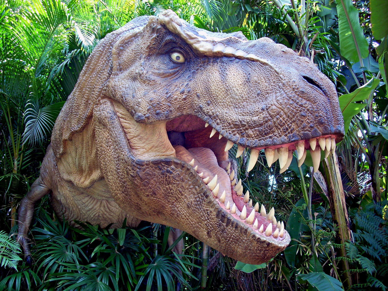 A T-Rex in the jungle
