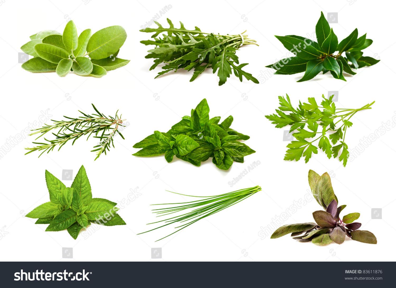 Mix Aromatic Herbs I