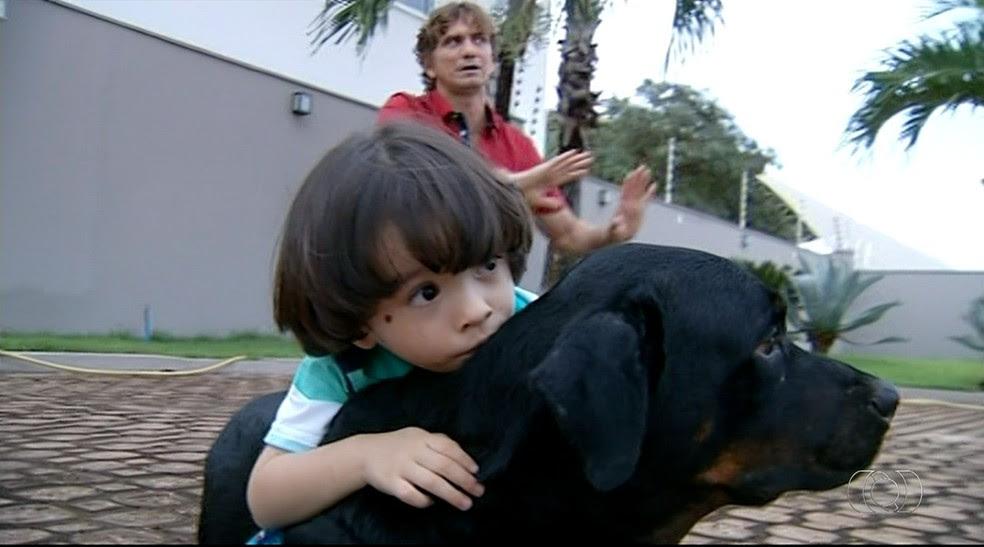Cachorros auxiliam em terapia social de crianças com autismo (Foto: Reprodução/TV Anhanguera)