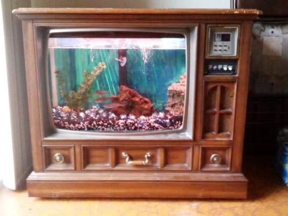 Aquário TV: Aquário feito simulando a tela de uma televisão antiga