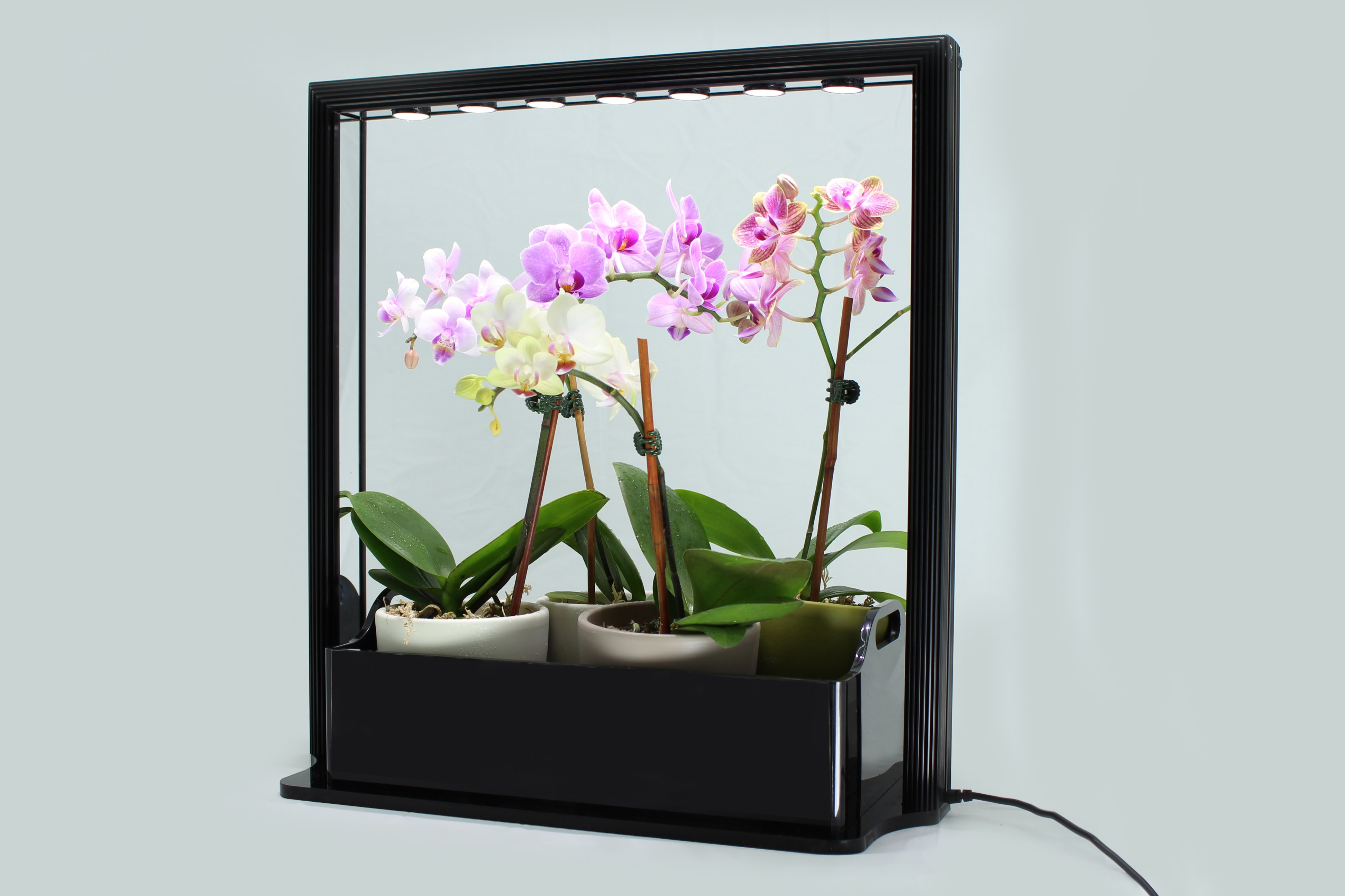 New LED Mini Garden from InHomeGardening.com is a Great Gift for the Green Thumb