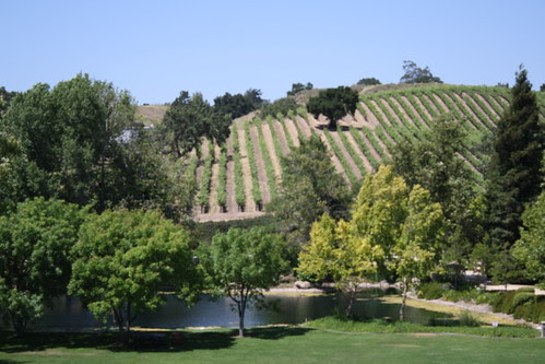 Bridlewood Estate Winery