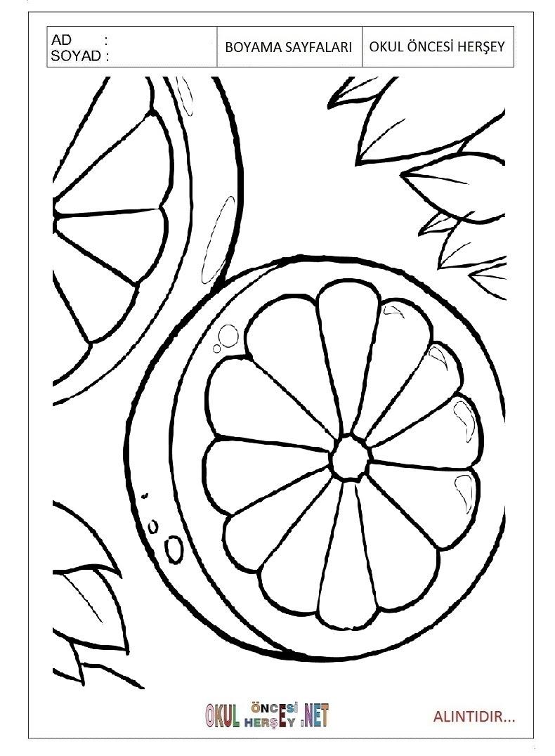 Portakal Boyama Sayfaları