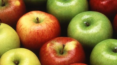 Center for Food Safety | News Room | USDA Approves ...