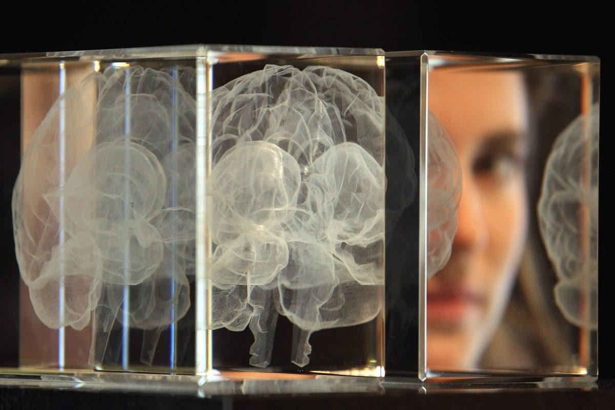 Myth #5: You're born with all the brain cells you'll ever have.