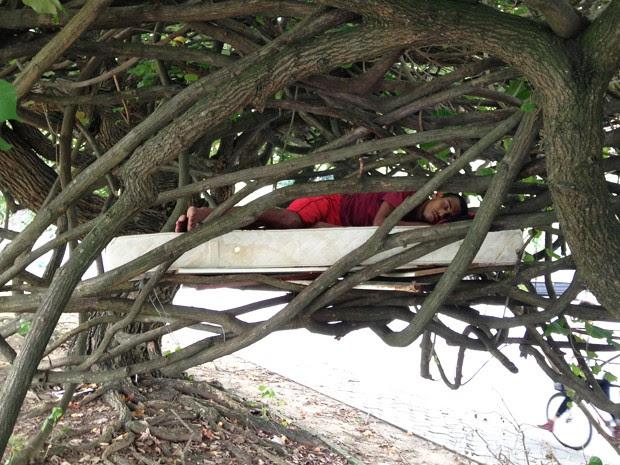 Homem dormia profundamente entre os galhos da árvore na Lagoa Rodrigo de Freitas na manhã desta quinta-feira (Foto: Fabiano Ristow/TV Globo)