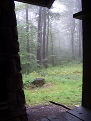 Foggy Morning from the Shelter