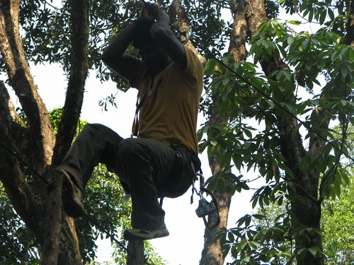 Rope_Challenge_Course_Pole_Walk_More