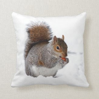 Squirrel in the Snow Throw Pillows