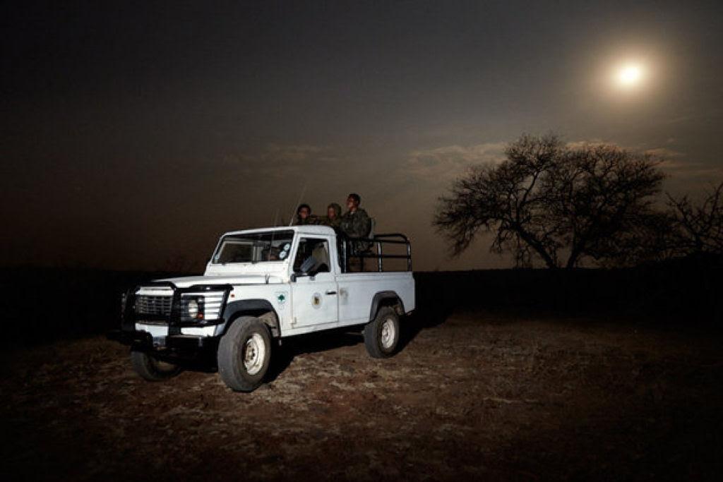 Mambas Hegras: a patrulha de mulheres que luta contra os caçadores furtivos