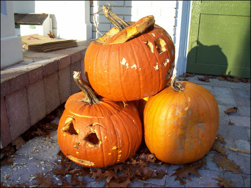 GTA Pumpkins, Nov 8, 2009