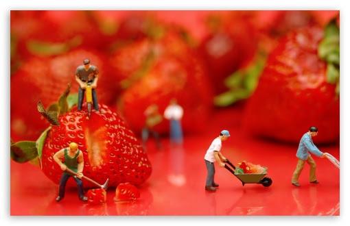 Strawberries 4K HD Desktop Wallpaper for 4K Ultra HD TV ...
