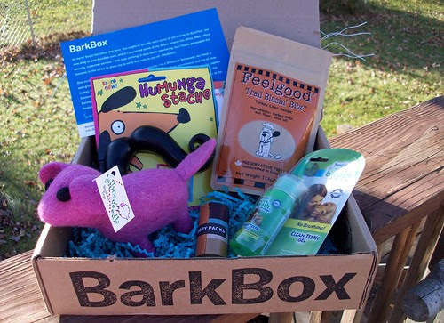 BarkBox_1012