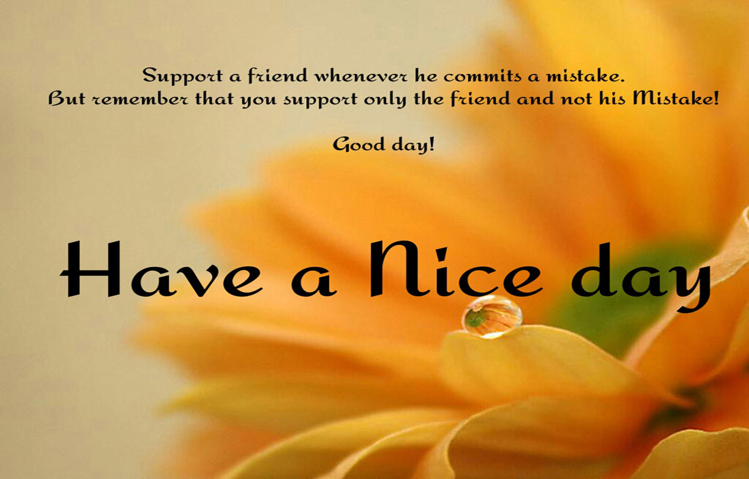 Good Morning Wishes Wallpapers 73 Background Pictures
