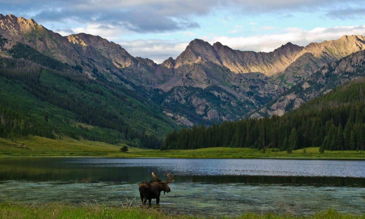 Nature Conservancy: as 20 melhores fotos da Natureza de 2013 15