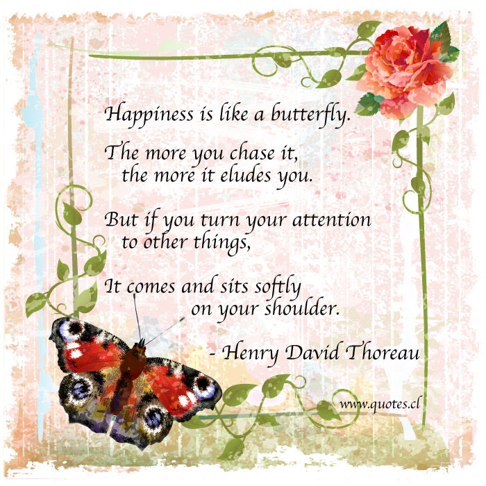 Happiness Is Like A Butterfly Quotes