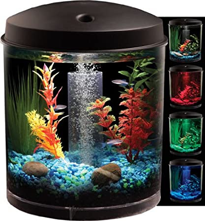 DECORATE YOUR AQUARIUM WITH THESE AMAZING ORNAMENTS