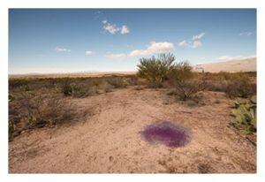 Mystery Purple Spheres