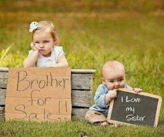 Brother For Sale Funny Images Photos