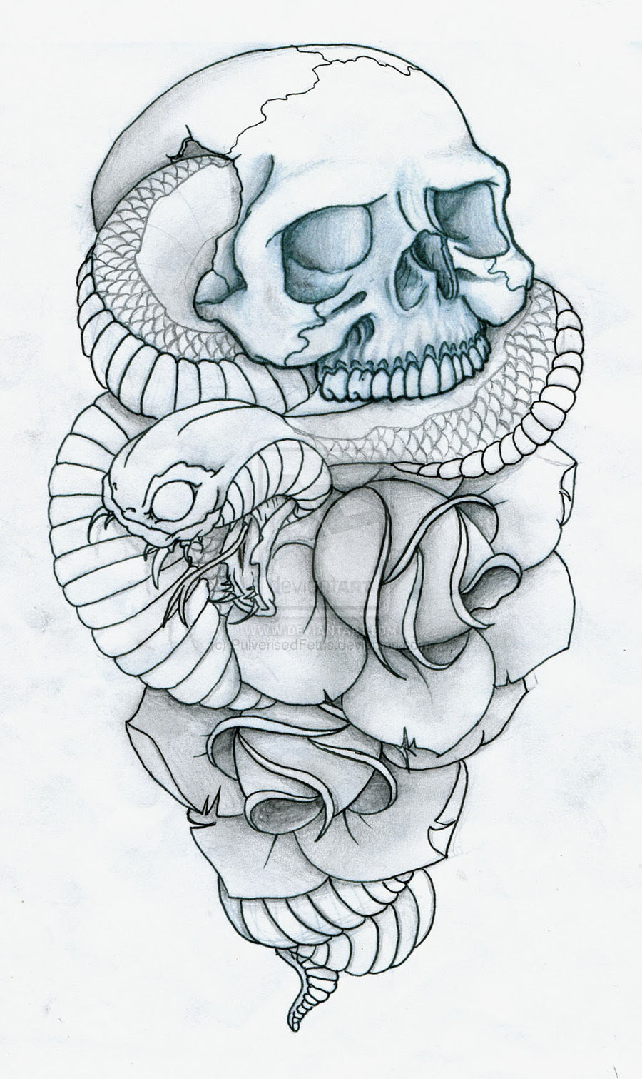 Skull Snake And Roses Tattoo Designs Photo 4 2017 Real Photo