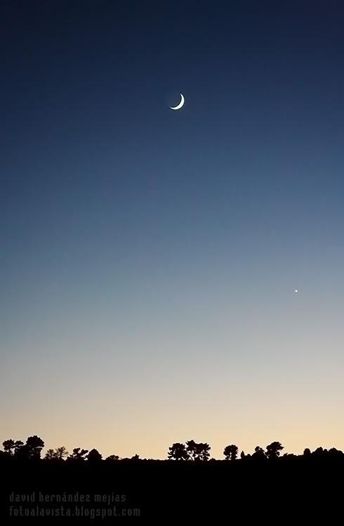 La noche de la media luna