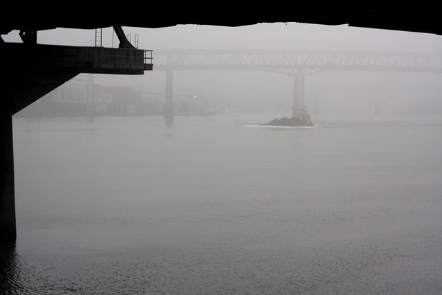 fog, willamette river