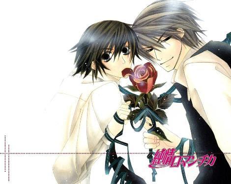 Junjou Romantica La Serie Yaoi De La Temporada Comic Pasion