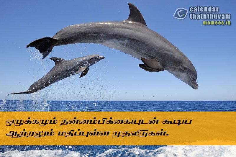 Tamil Philosophy Hope The Philosophy Of Hope In Tamil Hope