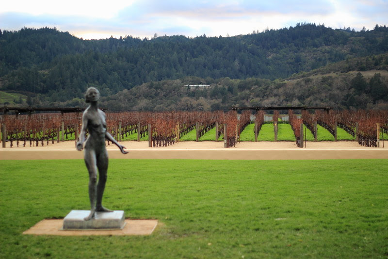 wine country6