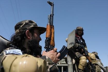 Талибы отказались заключать перемирие с сопротивлением в Панджшере