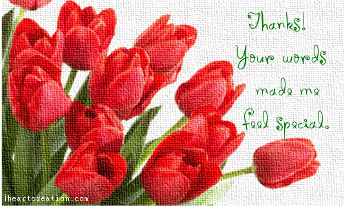 Made Me Feel Special Free Congratulations Ecards Greeting Cards